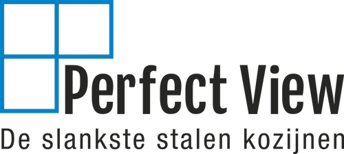 Perfect View - Logo